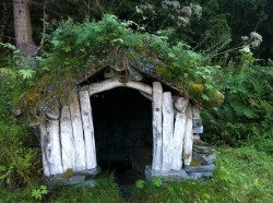 Sod Roof on a traditional Norwegian structure.