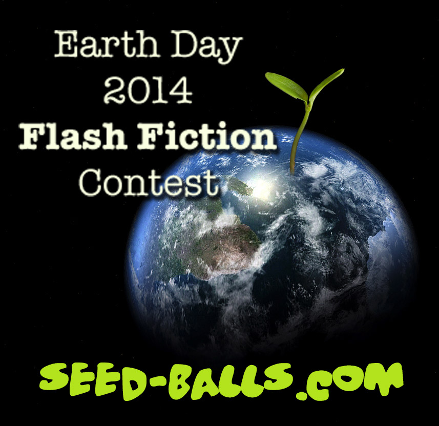Seed Ball Fiction Contest